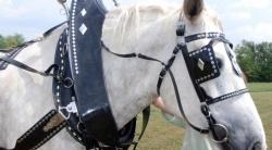 馬具での使用例2