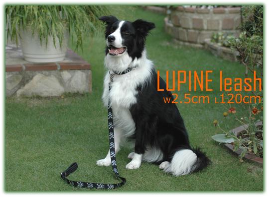 LUPINEの2.5cm巾120cmリード